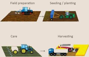 proses pertanian